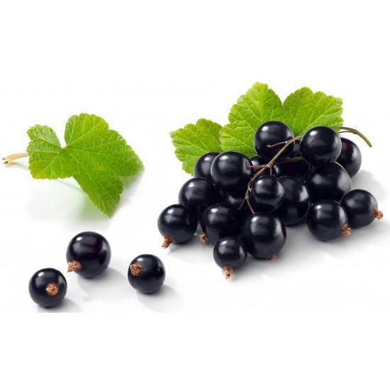 Coacaze negre confiate (Ribes nigrum) 500g