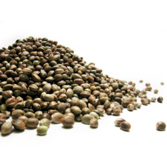 Seminte de Canepa Nedecorticate crude 1kg